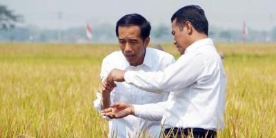 Amran Sulaiman, Satu-satunya Menteri yang Berani Melawan Mafia Pangan