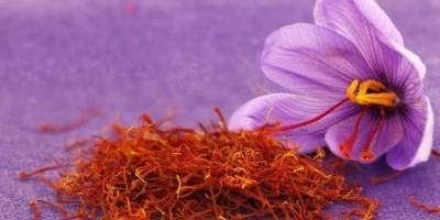 Mengenal Saffron, Rempah Termahal di Dunia