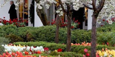 Melania Trump Bersiap Rombak Kebun Mawar Di Gedung Putih