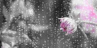 Saat Hujan, Waktu Mustajab untuk Memanjatkan Doa