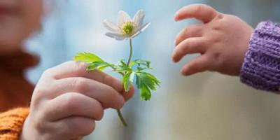 2 Benalu Yang Sebabkan Hati Kita Tidak Bisa Menjadi Ikhlas