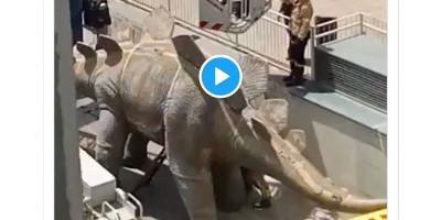 Penemuan Pria Tak Bernyawa Di Dalam Patung Dinosaurus Bikin Geger Barcelona
