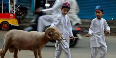 Daging Kurban Tidak Sampai Pada Tuhan, Melainkan Takwa